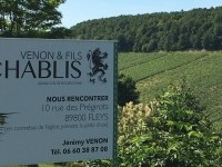vigoble-du-chablis